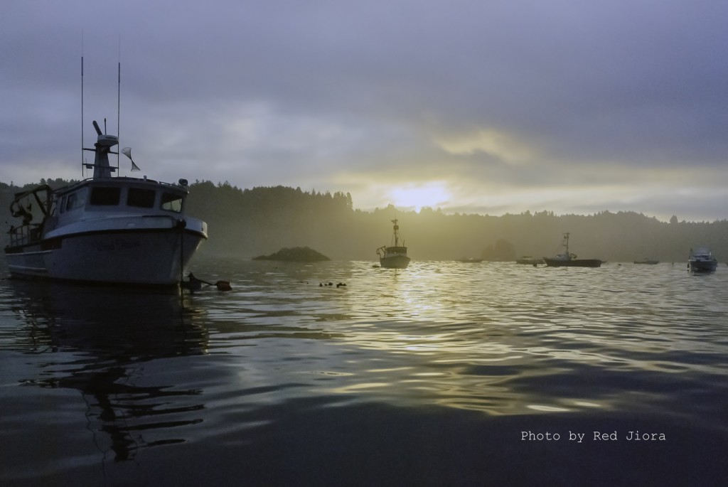Sunrise in the bay, looking at Wind Rose Charters in Trinidad Harbor, California, photo by Red Jiora